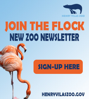 Join the Flock. New Zoo Newsletter.